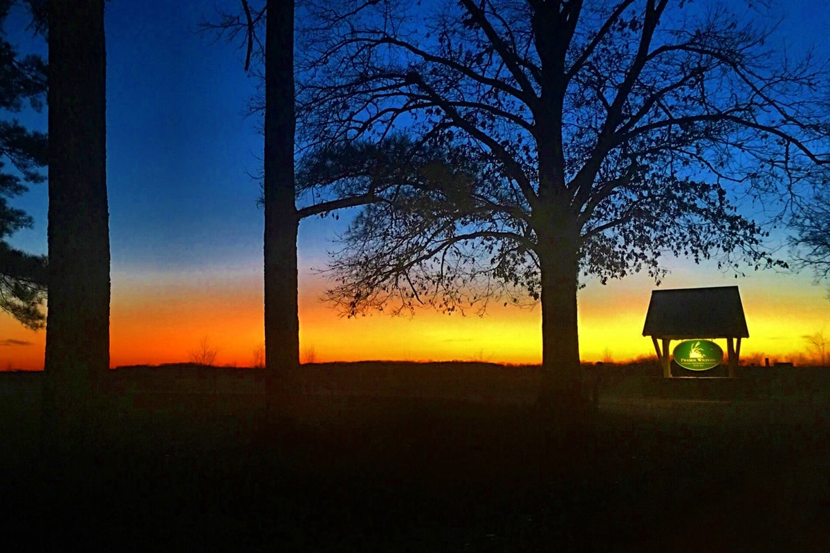 Sunset at prairie wildlife
